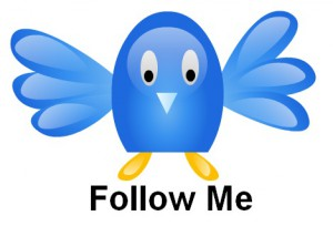 Twitter_Vector_Graphics_by_tinydesigner